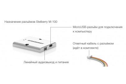 Микрофон STELBERRY M-100 всенаправленный цифровой для записи разговоров